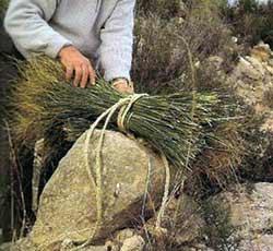 Artesan a cester a y fibras vegetales madridejos - Artesania esparto ...